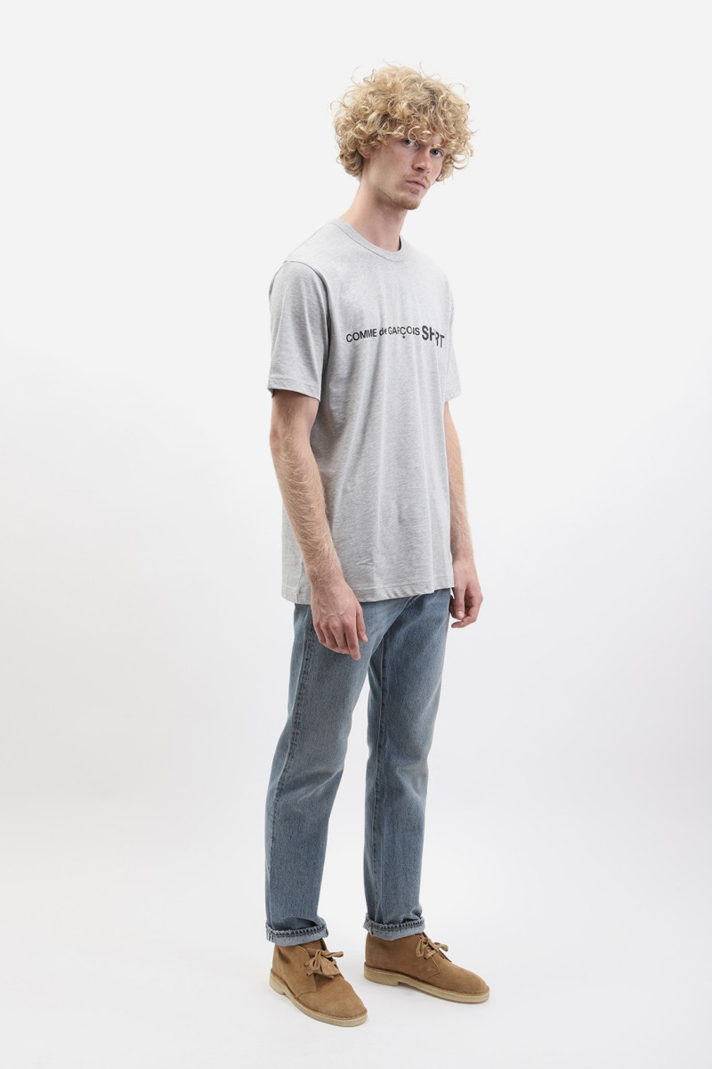 Mens ss t-shirt w28116 Grey