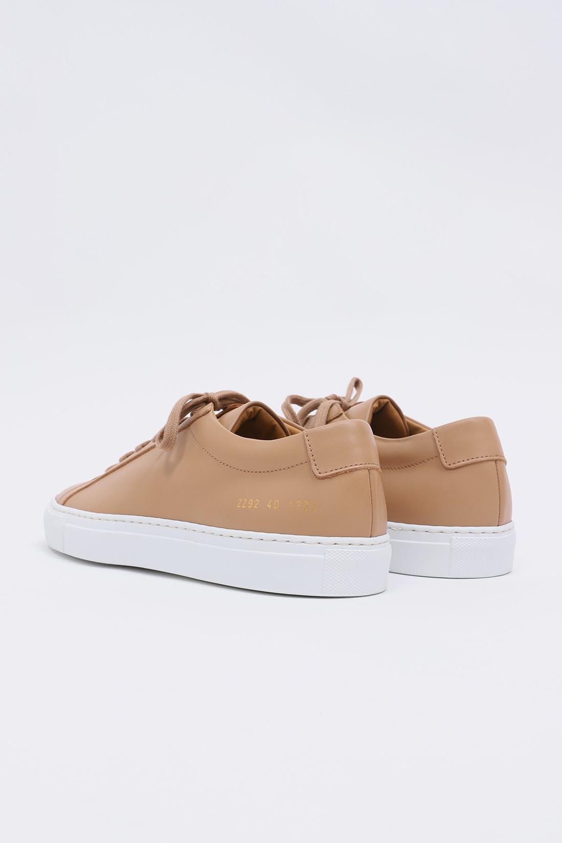 COMMON PROJECTS / Achilles white sole 2292 Tan