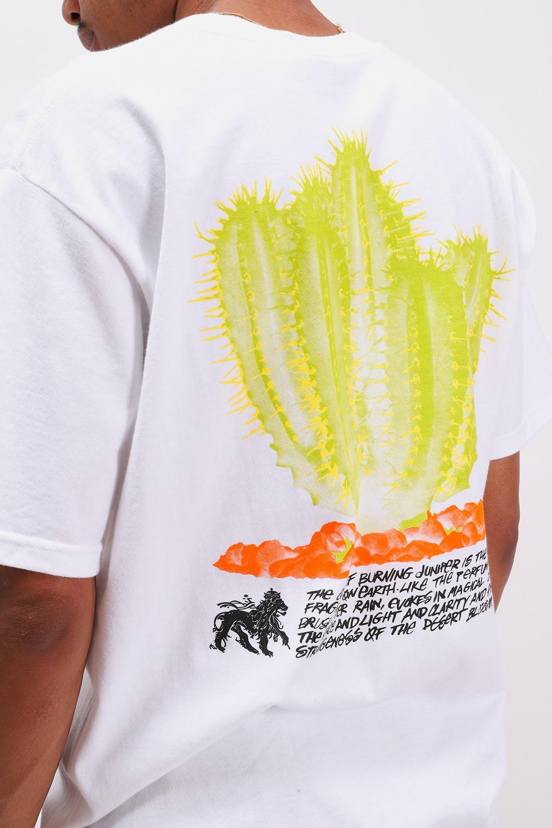 STUSSY / Desert bloom tee White