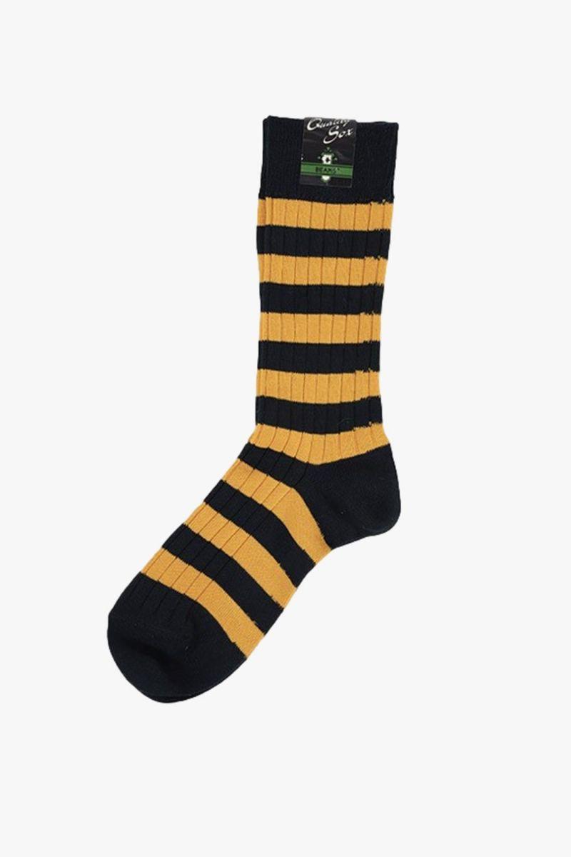 Rib stripe socks Navy mary gold